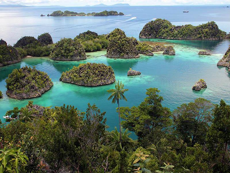 остров Новая Гвинея